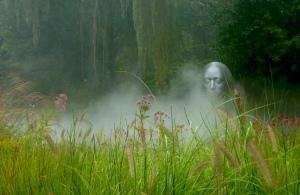 Mist Silver Head